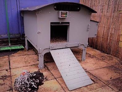 chicken-guard-on-arkus-house-copy.jpg.opt401x300o0-0s401x300-5935-.jpg